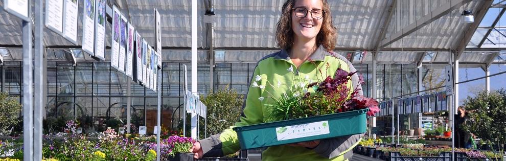 Pépinière Lehmann SA - pépinière - marché aux plantes